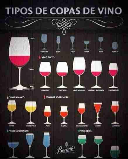 qu copas elegir para cada vino y licor bricoinventos
