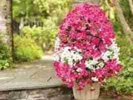 torre de flores para decorar
